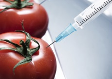 The Truth About Genetically Modified Foods